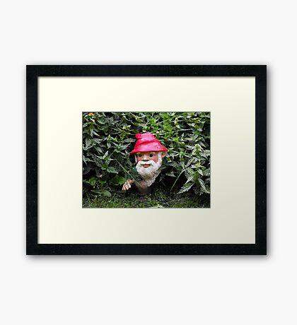 Hiding Gnome Framed Print