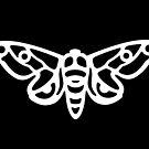 White Moth Silhouette (durchbrochen) von XOOXOO