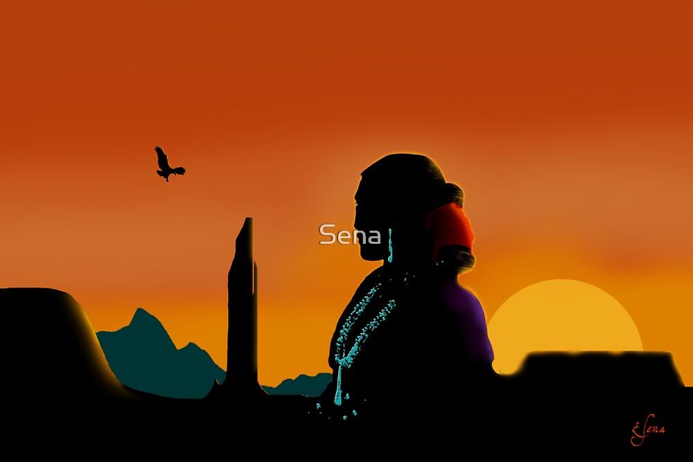 Eagle Gaze by Sena