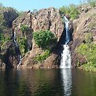 Wangi Falls ,Litchfield National Park Northern Territory Australia  by Virginia McGowan