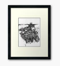 ravine Framed Print