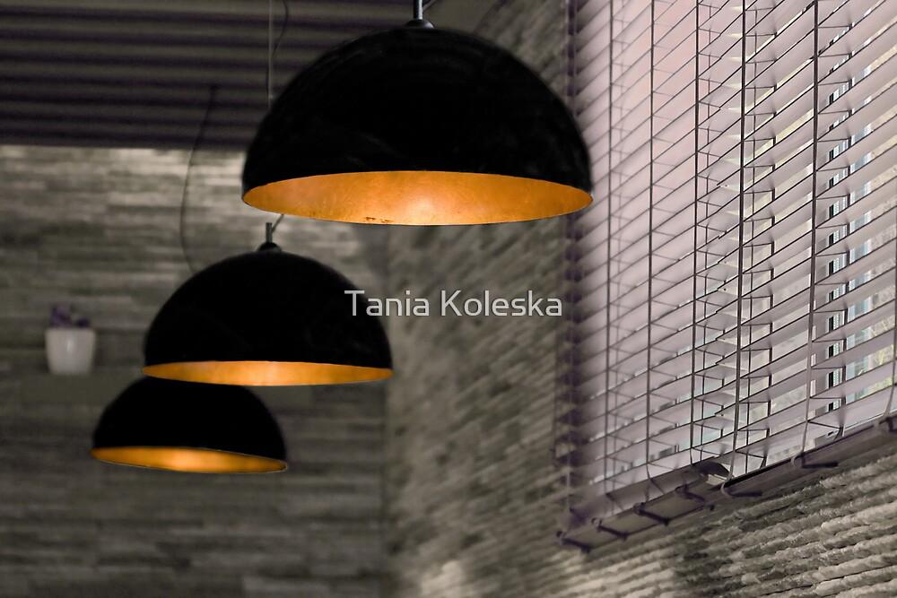 Give me light..... by Tania Koleska