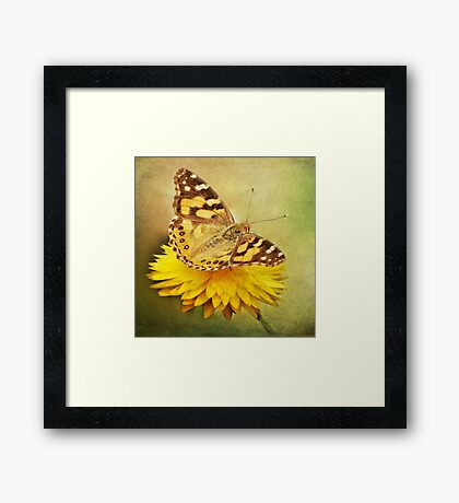 Fly Away With Me ~ Framed Print