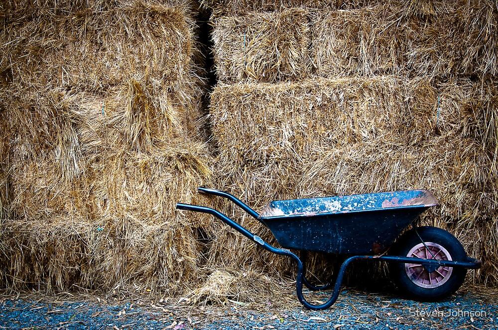 Old Wheelbarrow by Steven Johnson