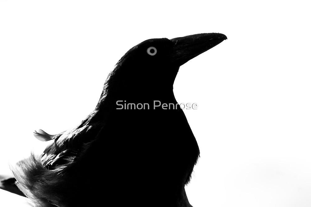 Death awaits by Simon Penrose