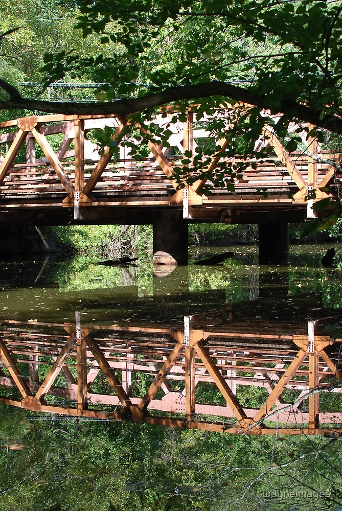 Princeton Bridge by wayneimages