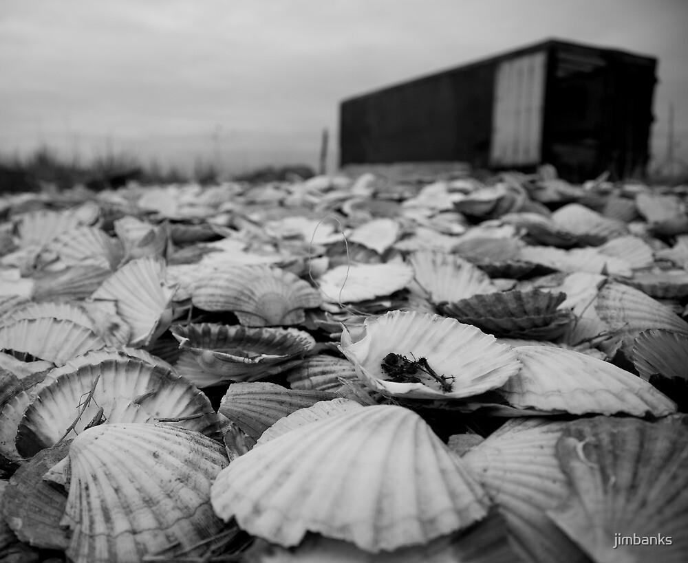 Shell beach, Dungeness by jimbanks