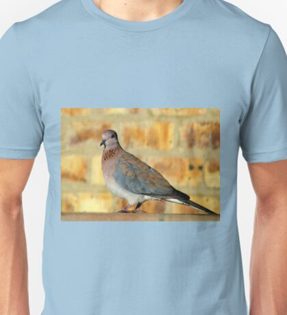 Laughing Dove T-Shirt