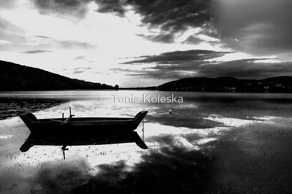 Black & white lake... by Tania Koleska