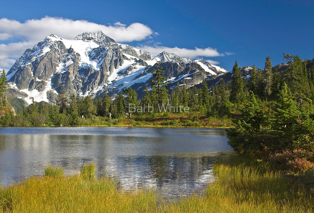 Mt. Shuksan, Picture Lake (North Cascades National Park) by Barb White