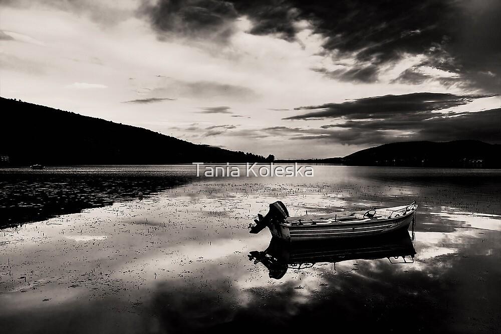 Boat in Black & White water. by Tania Koleska