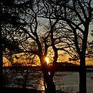 Sound Sunset by ElyseFradkin