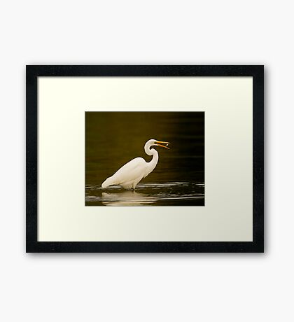 Stop playing with your food! Framed Print