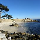 The Beach at Lover's Point by Sandra Gray