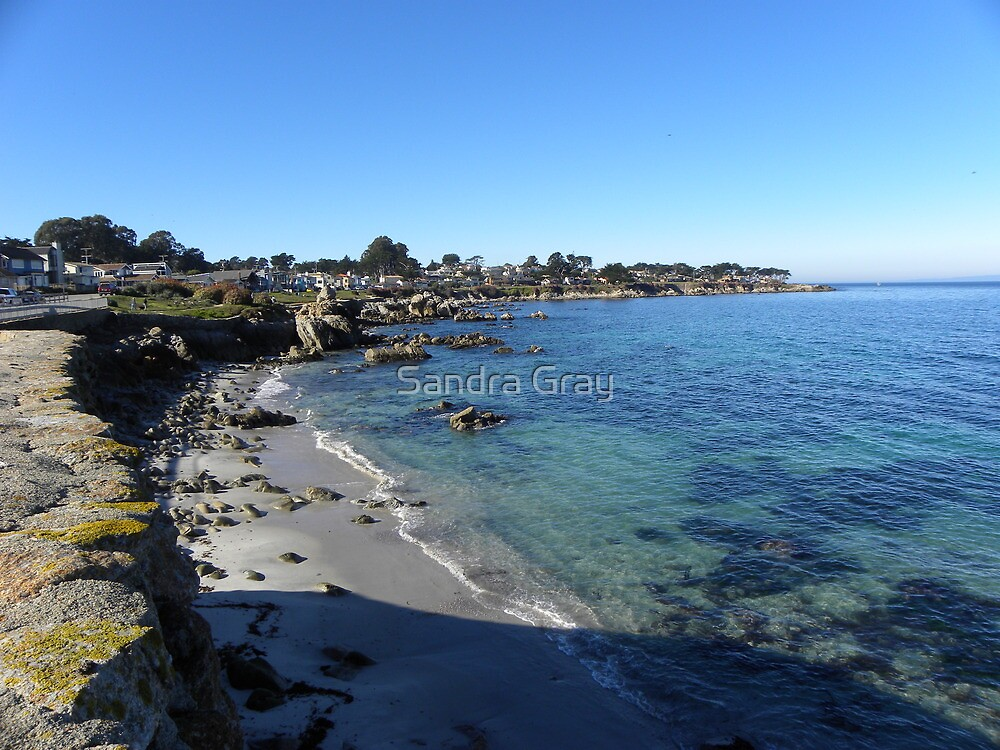 Pacific Grove, CA Shoreline by Sandra Gray