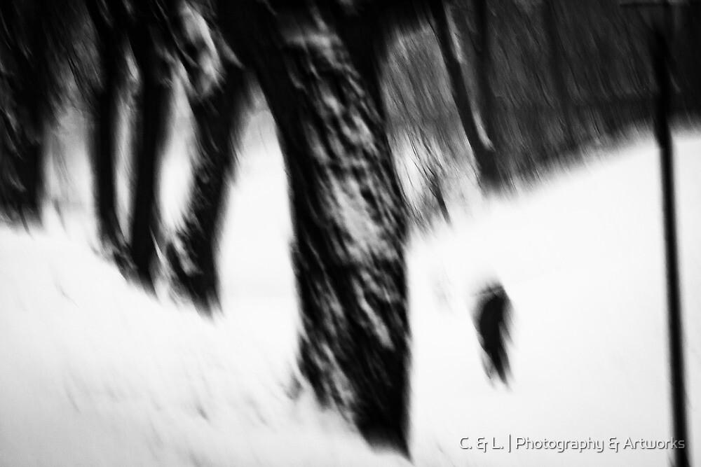 OnePhotoPerDay Series: 348 by L. by C. & L. | Photography & Artworks