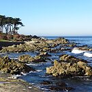 Pacific Grove, CA  Rocky Shoreline by Sandra Gray