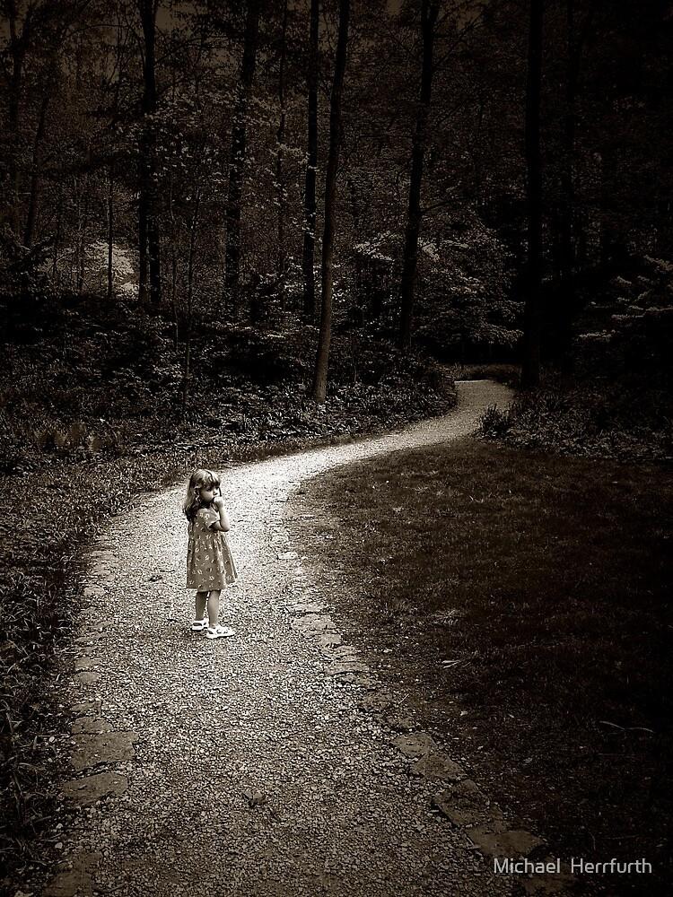 Lost by Michael  Herrfurth