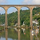 Calstock Viaduct, August 2019 by RedHillDigital