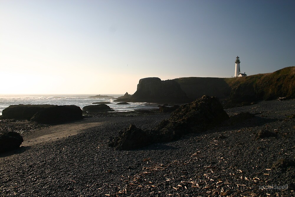 Shoreline at Yaquina Head Lighthouse, Oregon by sccaldwell