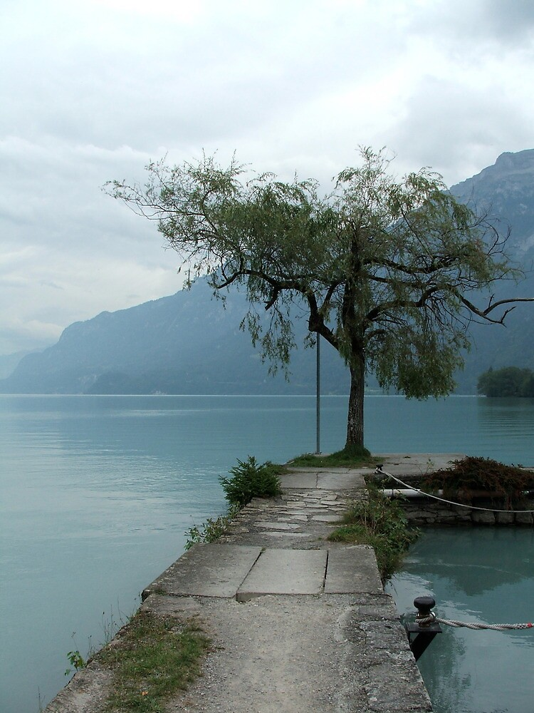 Solitude - Interlaken, Switzerland by rwneal