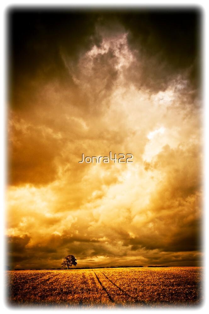 The tree by Jonra422