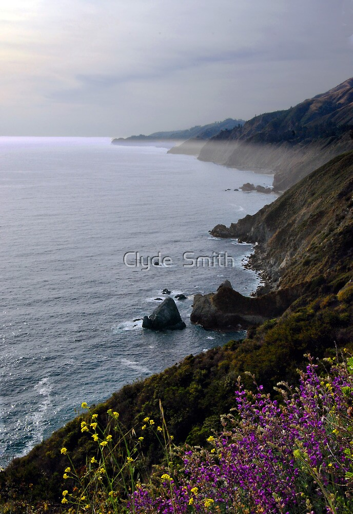 Springtime at Big Sur by Clyde  Smith