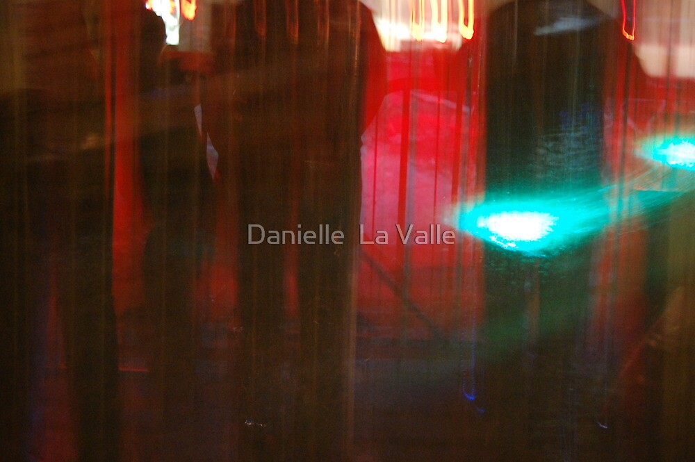 Reflections by Danielle  La Valle