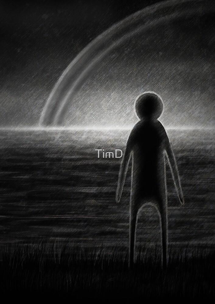 Somewhere by TimD