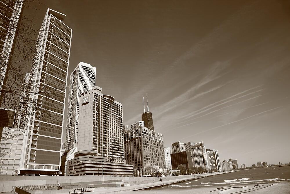 Chicago Skyline and Beach by Frank Romeo