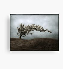 We Break and We Bend and We Turn Ourselves Inside Out Canvas Print