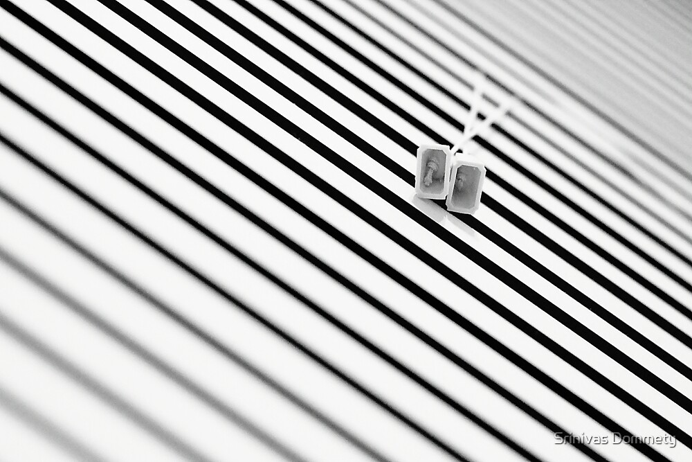 Window Blinds by Srinivas Dommety