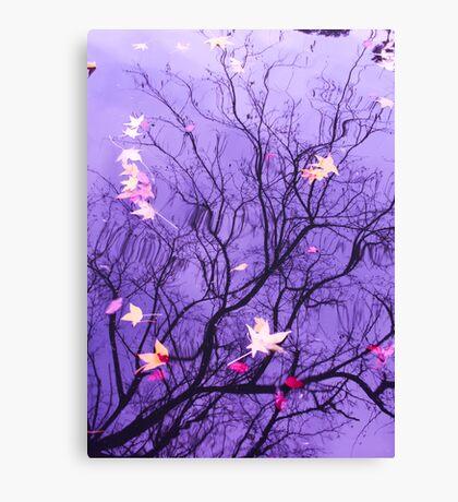 Purple Reflections Canvas Print