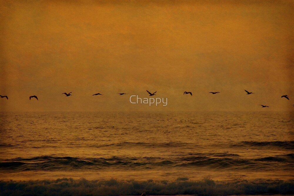 Come Fly with Us by Chappy