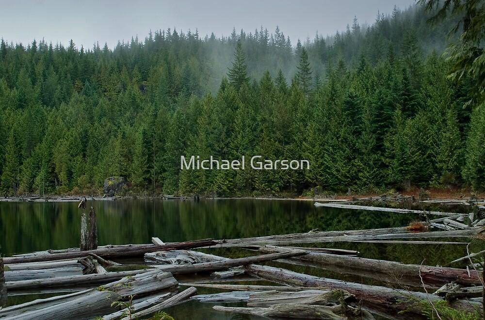 Hoover Lake 1 by Michael Garson