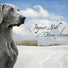 Joyeux Noel by Leslie Nicole