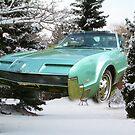 A Real Snowmobile...... Tornado.... by Larry Llewellyn