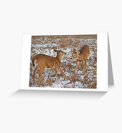 Prospecting! Greeting Card