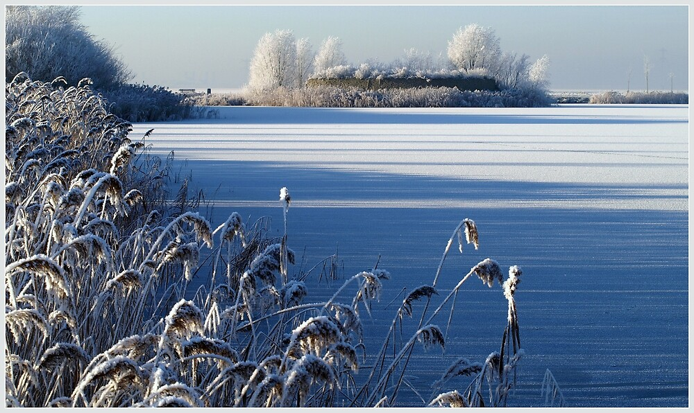 Wonderful winterday by Janone