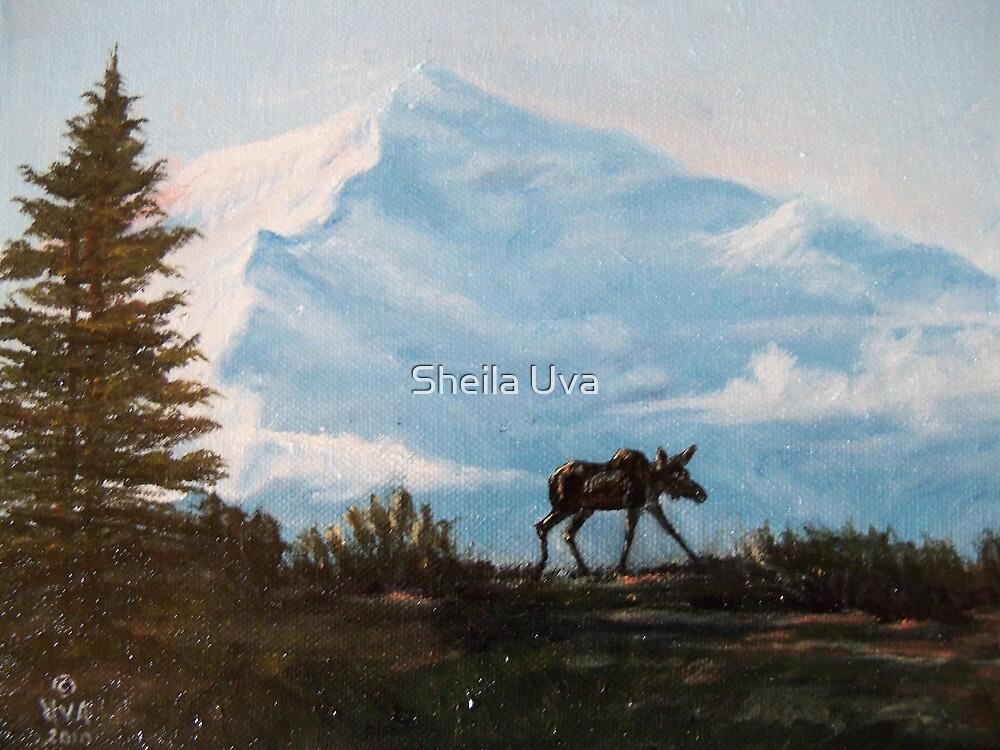 Moose in Alaska by Sheila Uva