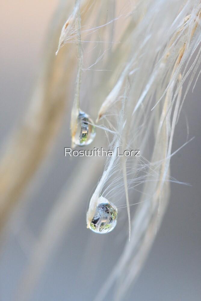 Raindrops by RosiLorz