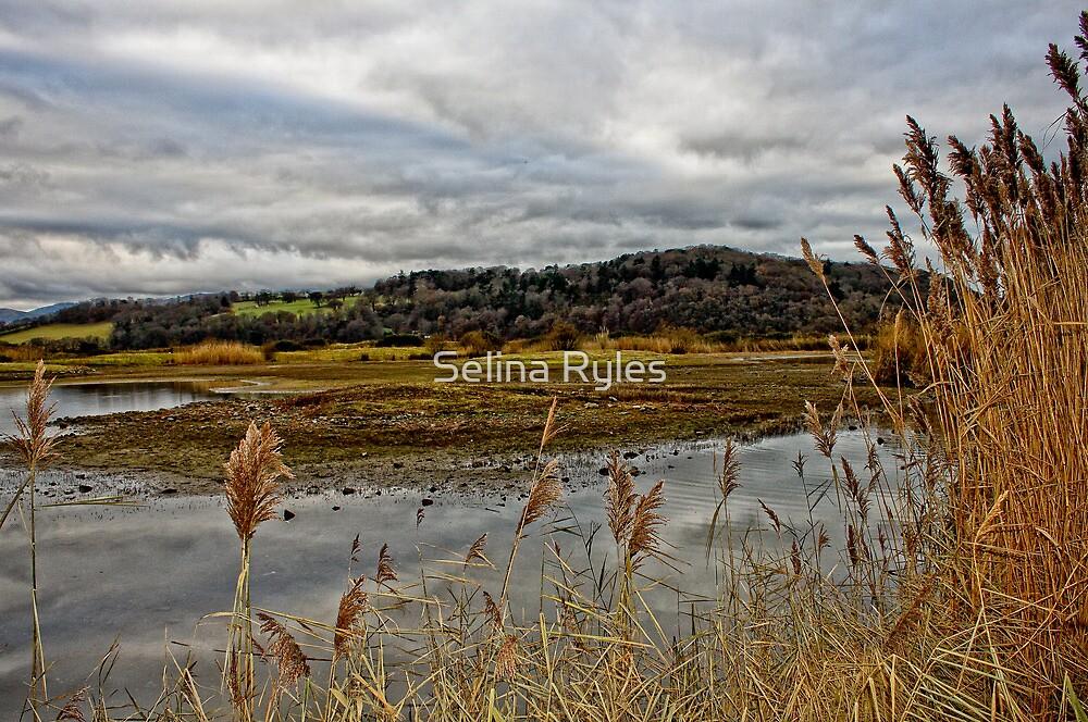 Lakeside Beauty  by Selina Ryles