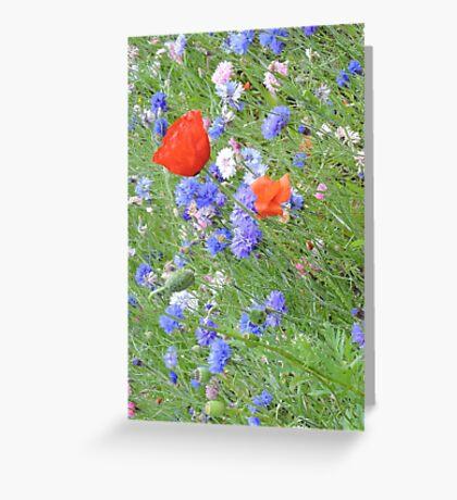 Wildflower Flurry Greeting Card