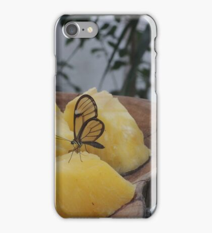 Transparency is a Wonderful Thing iPhone Case/Skin