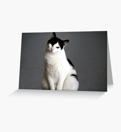 "Clifford... The ""Misunderstood"" cat Greeting Card"