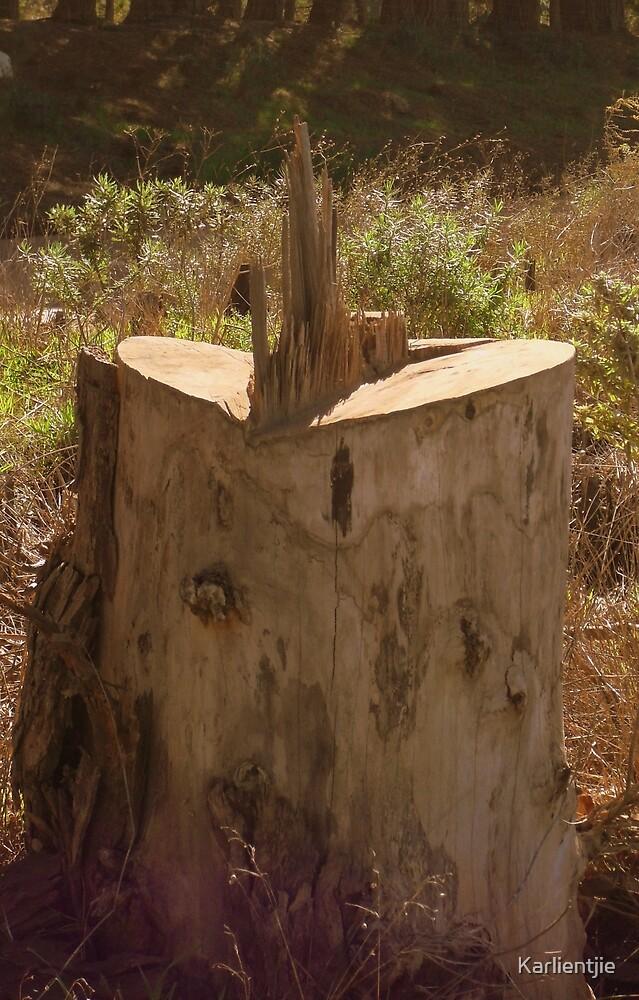 Wooden time..... by Karlientjie