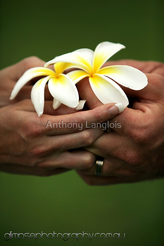 hold onto me... by Anthony Langlois
