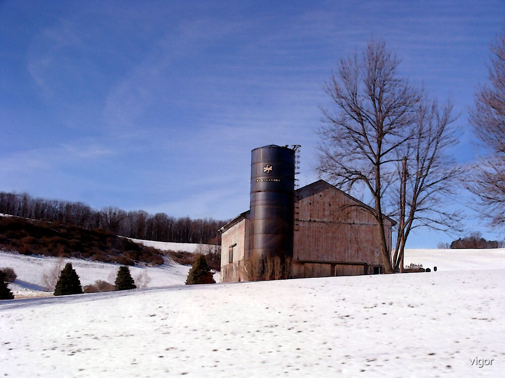 A Winter Scene by vigor