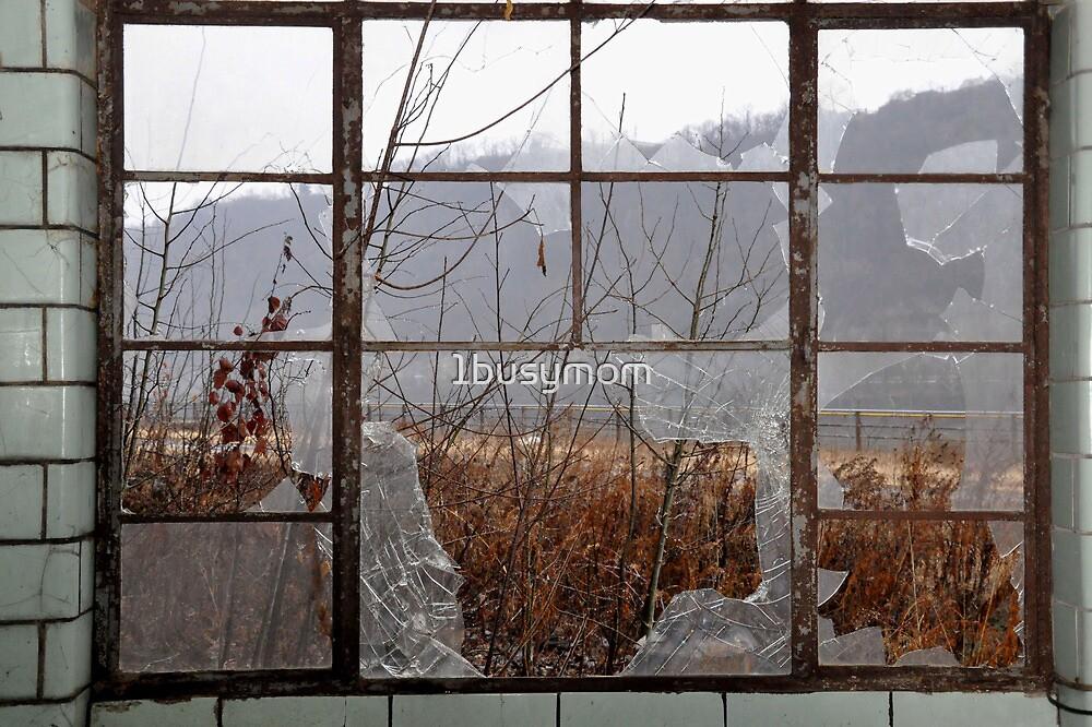 through the broken window by 1busymom