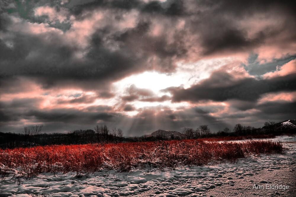 On such a Winter's Day by Ann Eldridge